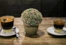 3 Varian Espresso Ini Dijamin Bikin Melek dan Ketagihan