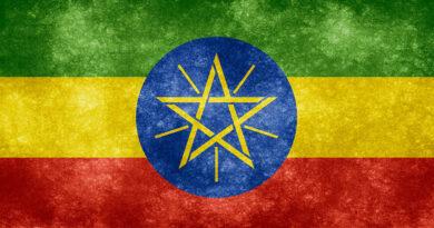 https://www.freepik.com/free-photo/ethiopia-grunge-flag_608088.htm