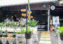 Cotta Coffee : Cara Menikmati Kopi Sekaligus Berburu Tanaman Hias